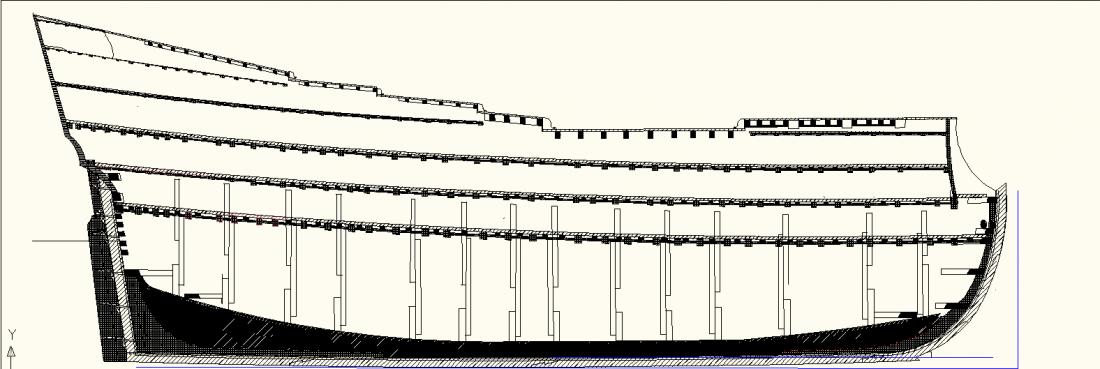 coupe longitudinale